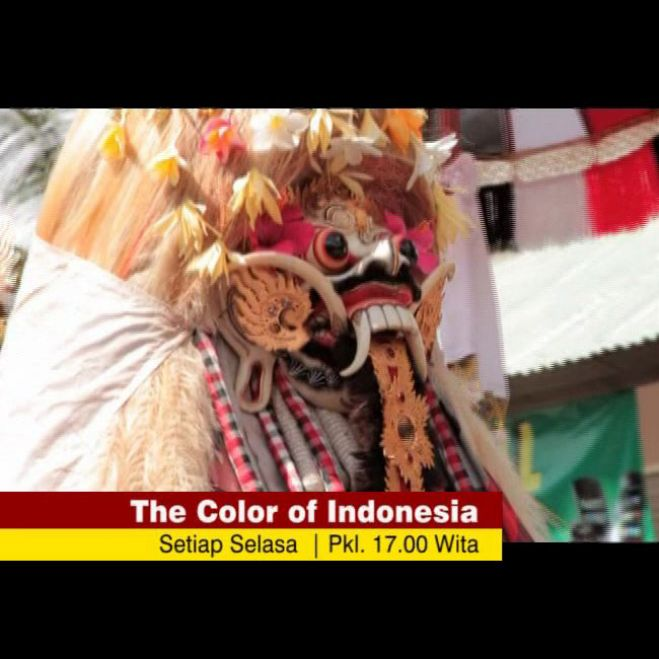 The Color of Indonesia